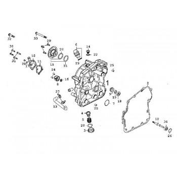 Bouchon de Crépine