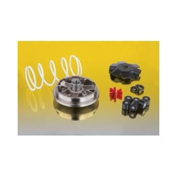Variateur Quad MULTIVAR 2000 - Malossi - 50 MXER